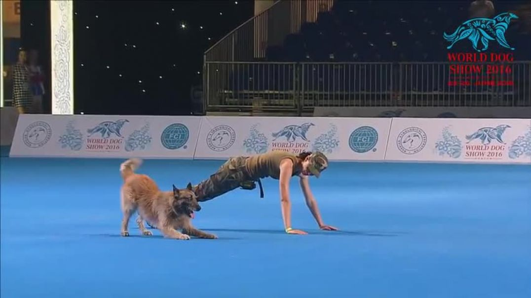 FCI Dog dance World Championship 2016 - Freestyle final - Lusy Imbergerova and Deril (Italy)